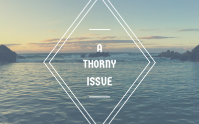 A Thorny Issue … Part 2 | Danny Murphy